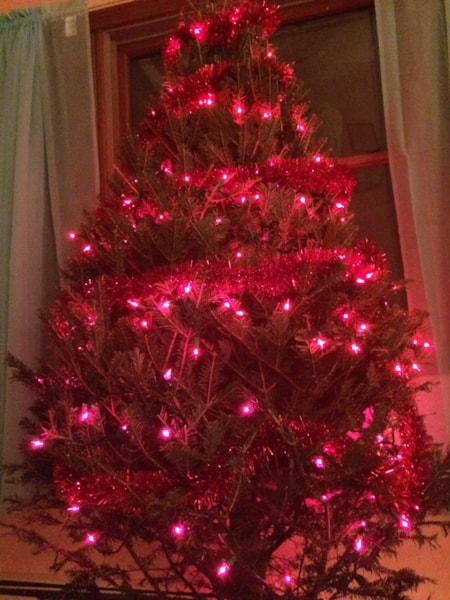I've never done a tree all one color but I found this cool red garland at a store that was going out of business over the summer (Benny's?) so I bought it. I already had a few strings of red lights so I figured what the heck?!